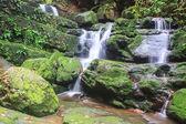Cachoeira e rochas cobertas de musgo — Foto Stock