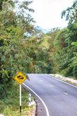 Camino en un bosque verde — Foto de Stock