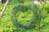 Heart decorated tree in the garden — Stock Photo