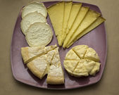 Several different French cheeses on a plate — Stockfoto