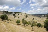 View to the mountain in Puglia, Italy — Stock Photo