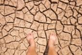 Naked human bare feet on dry soil — Stock Photo