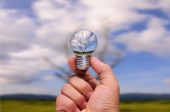 Hand holding of photo manipulation dead tree in light bulb. — Stock Photo