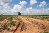 Wind Turbine for alternative energy on background sky on Cassava — Stock Photo