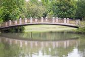 Stone bridge in beautiful garden — Stock Photo