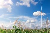 Wind Turbine Farm with Sunlight — Foto de Stock