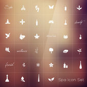 Varios iconos de spa — Vector de stock