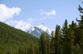 Mountain Altai, Belukha — Stock Photo