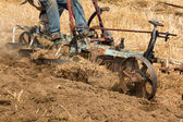 Horse Ploughing — Stock Photo