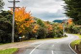 Estrada de outono — Fotografia Stock