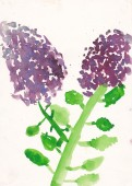 Child picture of syringa (lllac) watercolor illustration — Stock Photo