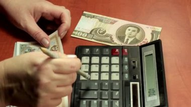 North Korean paper money counting — Stock Video