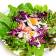 Fresh salad with boiled egg in a white plate — Stock Photo #53598173