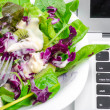 Vegetable salad with laptop isolated on white — Stock Photo #53598263