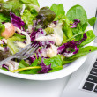 Vegetable salad with laptop isolated on white — Stock Photo #53598287