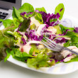 Vegetable salad isolated on white with laptop — Stock Photo #53598767