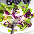 Vegetable salad isolated on white with laptop — Stock Photo #53598833