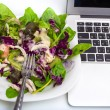 Vegetable salad isolated on white with laptop — Stock Photo #53598877