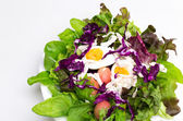 Fresh vegetable salad with boiled egg in white dish  — Stock Photo