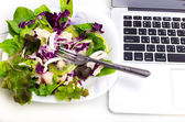 Many color salad with business laptop isolated on white  — Stockfoto