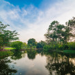 Pond in green park in evening — Stock Photo #69507407