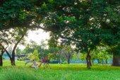 Bicicleta vermelha na grama verde — Fotografia Stock