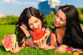 Happy friends on picnic on the lawn. — Stock Photo
