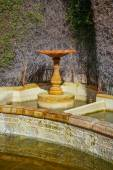 Stone birdbath in garden — Stock Photo