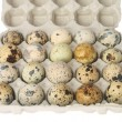 Quail eggs in a carton box isolated on white background — Stock Photo #61620635