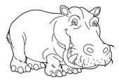 Cartoon animal - hippo — Stock Photo