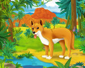 Cartoon  wild dog — Stock Photo