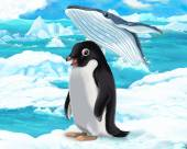 Penguin and whale — Stock Photo