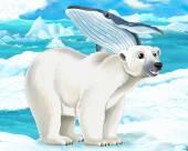 Polar bear   and whale — Stock Photo