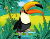 Toucan de dessin animé — Photo