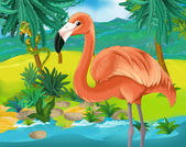 Flamant rose dessin animé — Photo