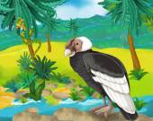 Cartoon condor — Photo