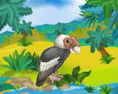 Cartoon wild condor — Stock Photo