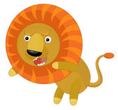 Cartoon lion animal — Stock Photo