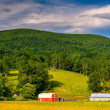 Barns and a mountain in the rural Potomac Highlands of West Virg — Stock Photo #52478545