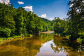 A river in the rural Potomac Highlands of West Virginia.  — Stock Photo