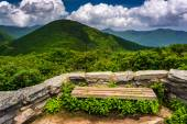 Bench and view of the Appalachians from Craggy Pinnacle, near th — Stock Photo