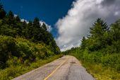 Black Balsam Knob Road, near the Blue Ridge Parkway in North Car — Stock Photo