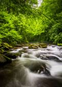 Cascades in the Oconaluftee River, at Great Smoky Mountains Nati — Stock Photo