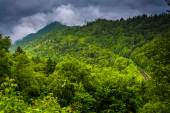 Dramatic view of the Appalachian Mountains from Newfound Gap Roa — Stock Photo