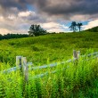 Fence and field along the Blue Ridge Parkway in North Carolina. — Stock Photo #52494971