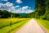 Farm field along a dirt road in the rural Potomac Highlands of W — Stock Photo