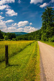 Farm field along a road in the rural Potomac Highlands of West V — Stock Photo