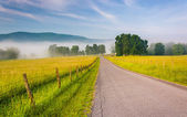 Farm fields along a country road on a foggy morning in the Potom — Stock Photo