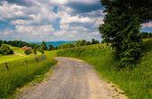 Поля фермы по грунтовой дороге в сельских горных районах potomac — Стоковое фото