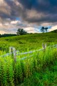 Fence and field along the Blue Ridge Parkway in North Carolina.  — Stock Photo